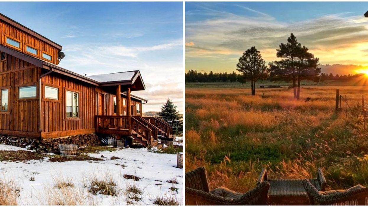 This Log Cabin Rental In Arizona Has 360-Degree Mountain Views