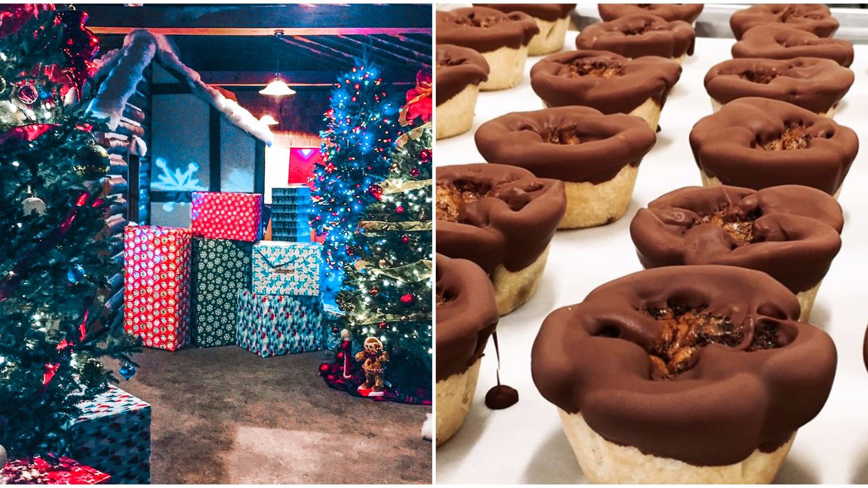 You Can Get All-You-Can-Eat S'mores & Chocolate Butter Tarts At This Ontario Xmas Farm