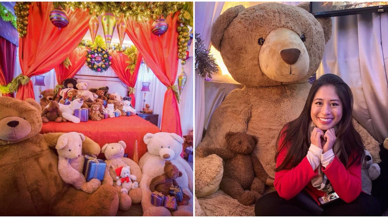 A Teddy Bear Suite With Hundreds Of Bears Is Coming Back To Seattle This Week