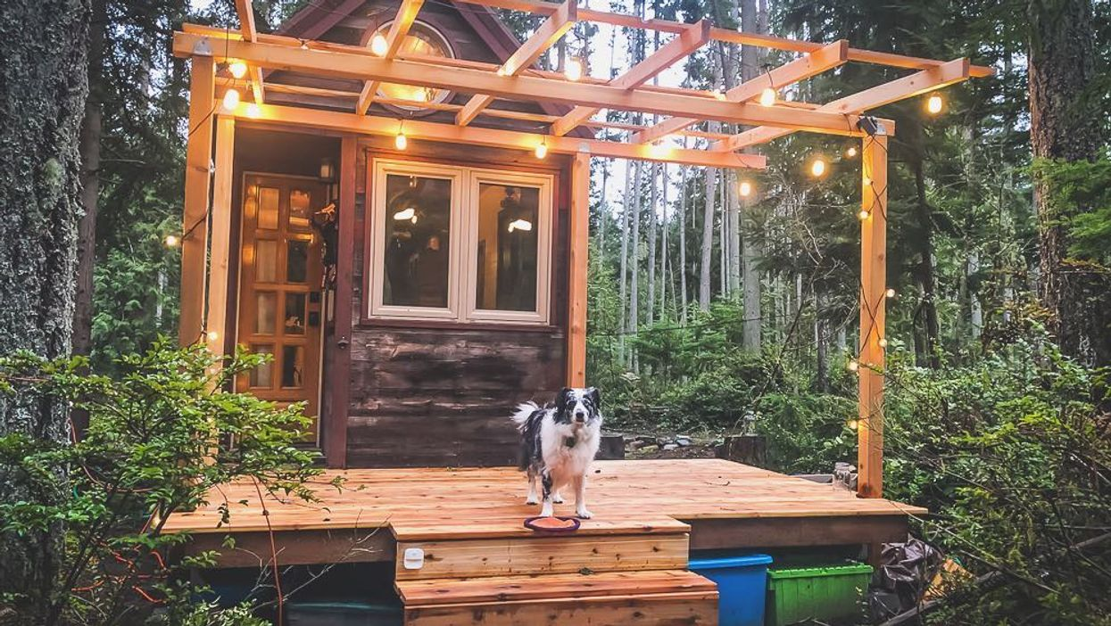 You Can Stay In This HGTV-Featured Tiny Washington House In The Woods For $69