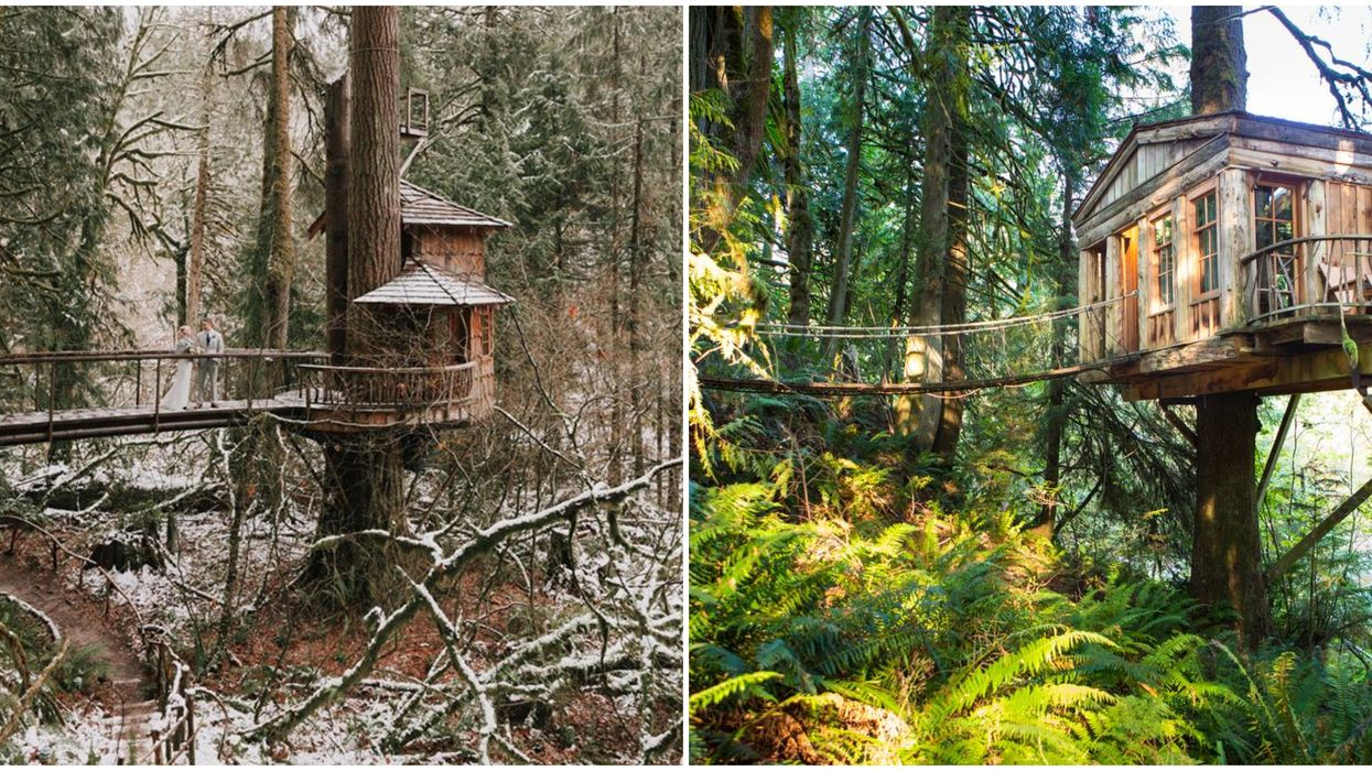These Romantic Treehouses In Washington Are The Perfect Weekend Getaway