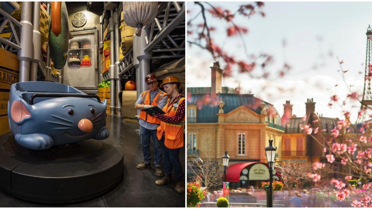Disney World 'Ratatouille' Ride Updates Look Promising
