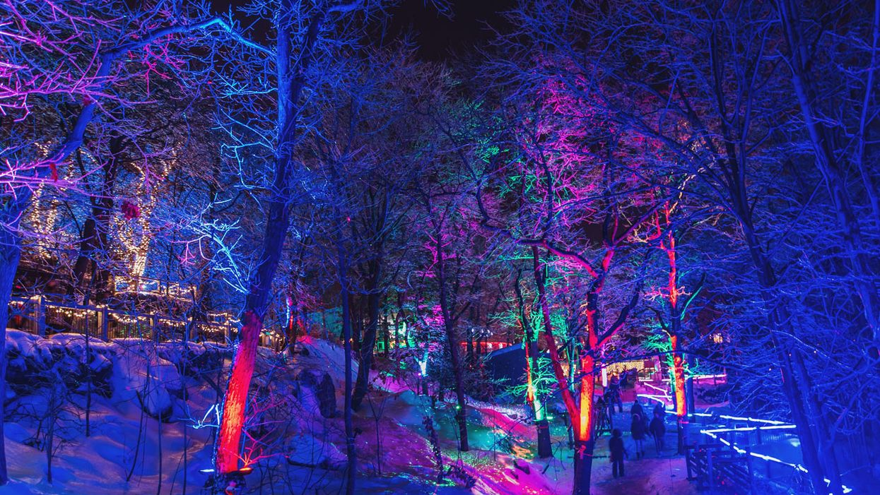 31 dates : Tu peux te promener à travers ce parcours illuminé à quelques heures de Montréal