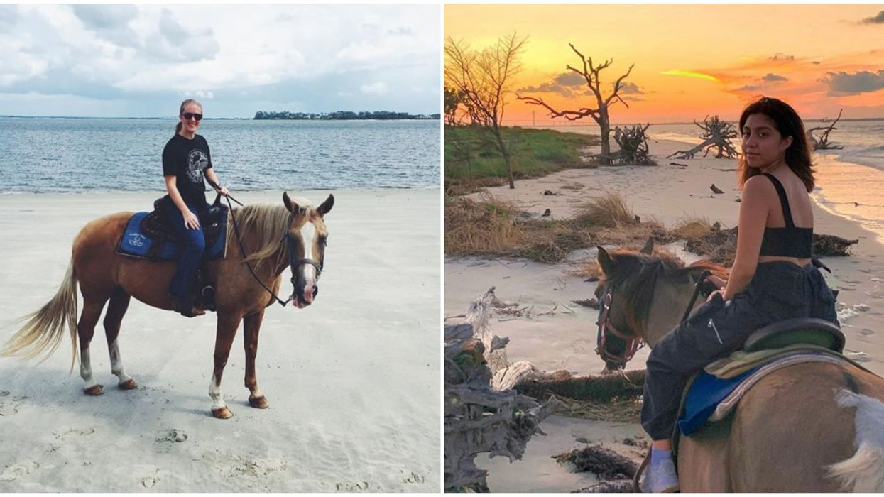 You Can Ride Horses On Jekyll Island