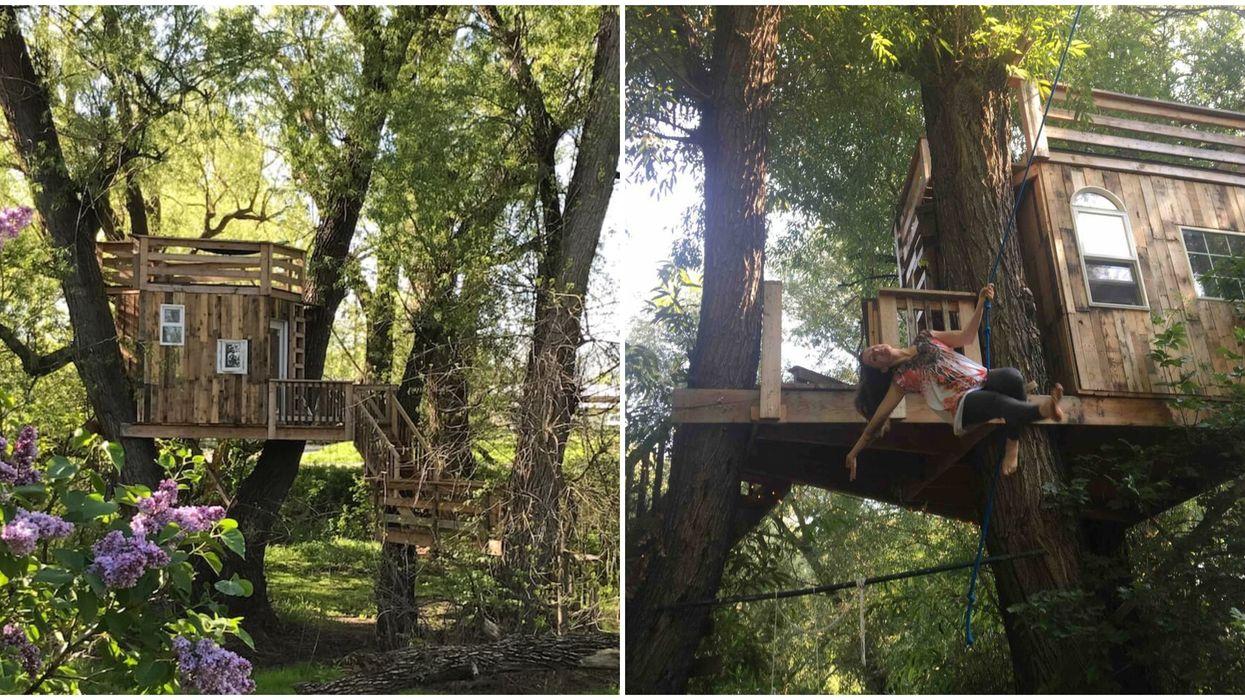 Tarzan Treehouse Airbnb In Utah Has A Rope Swing Perfect For A Fun Getaway