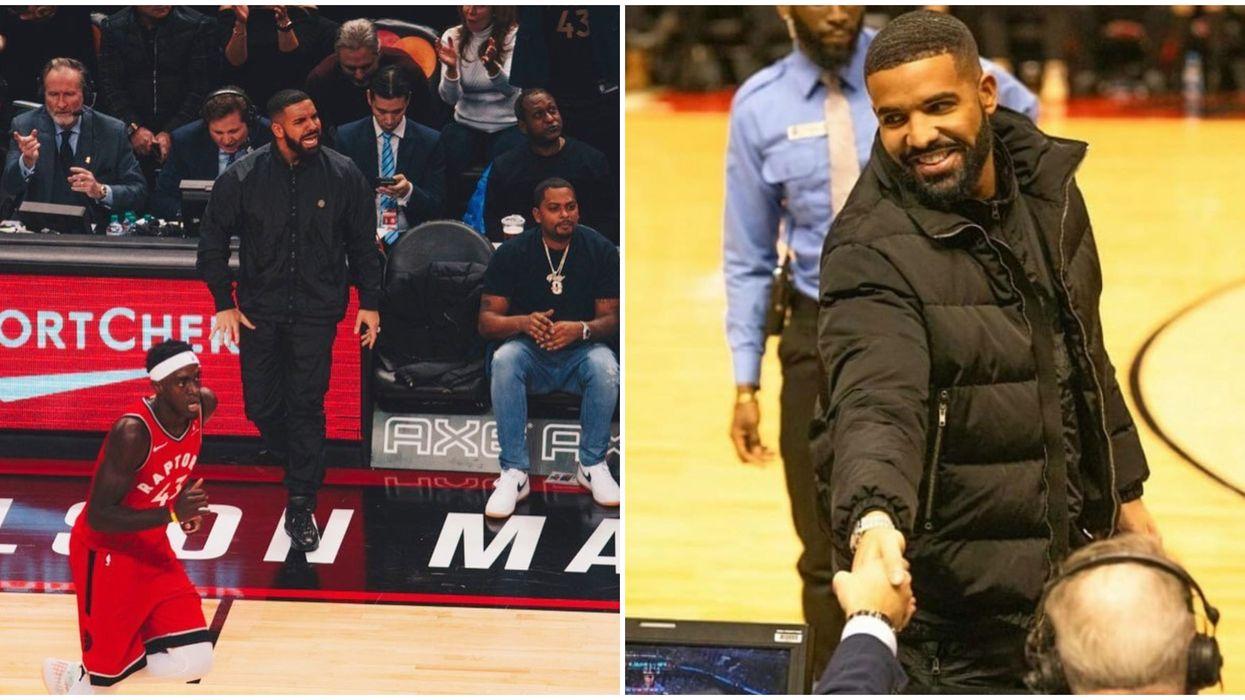 Toronto Raptors Celebrity Fan Drake