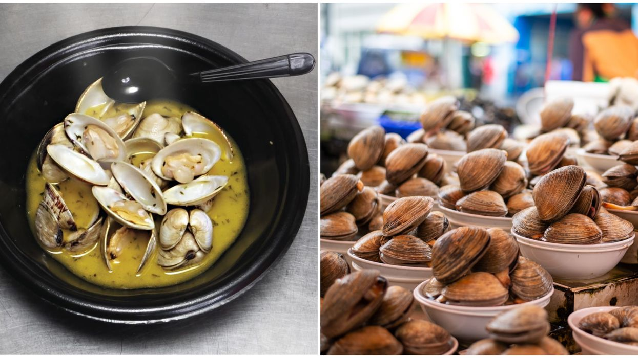 Florida Clam Jam Seafood Fest Happening In January Is Only $10