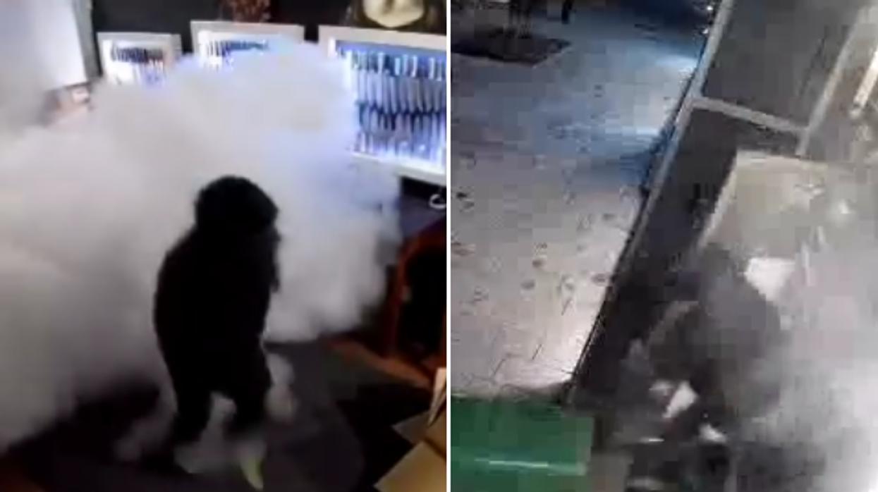 Des voleurs déjoués en tentant de cambrioler un commerce de Montréal