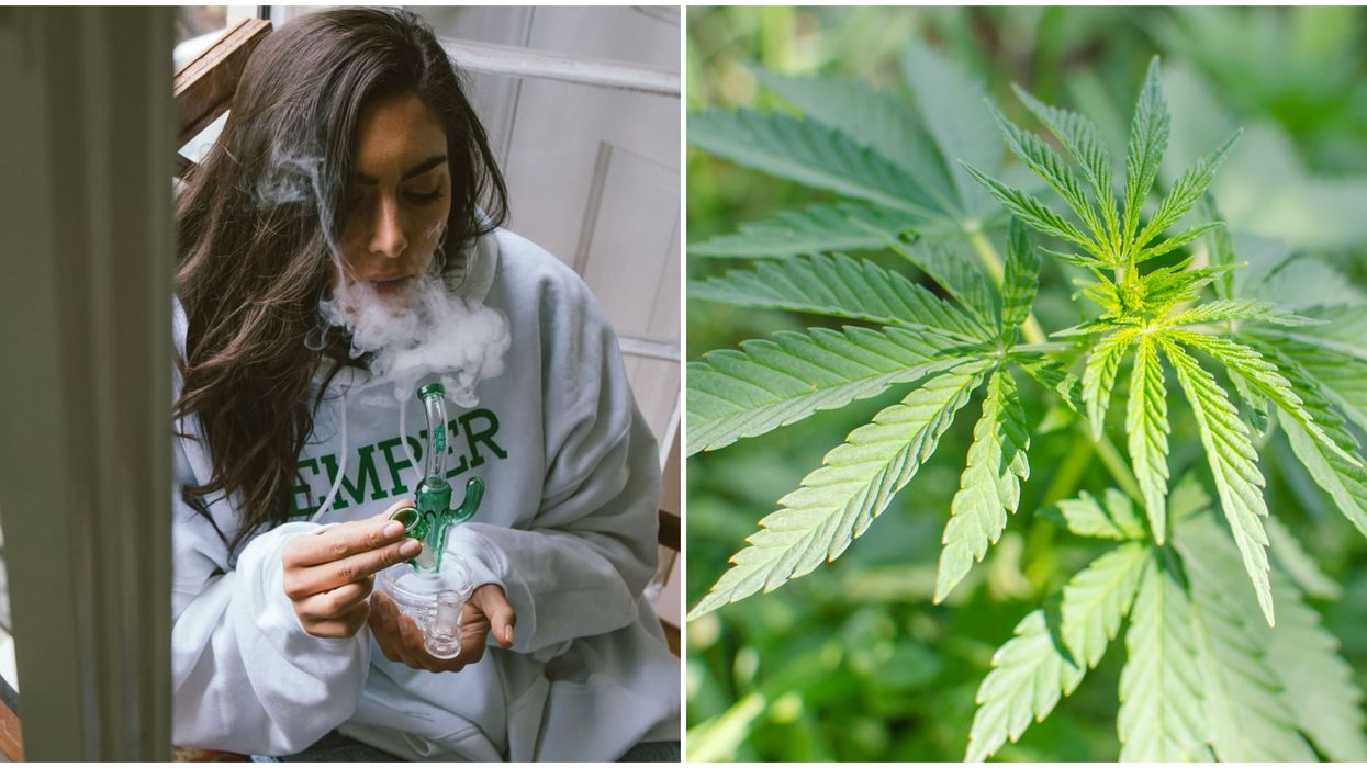 Louisiana Hemp Laws Are Getting A Much Needed Upgrade In 2020