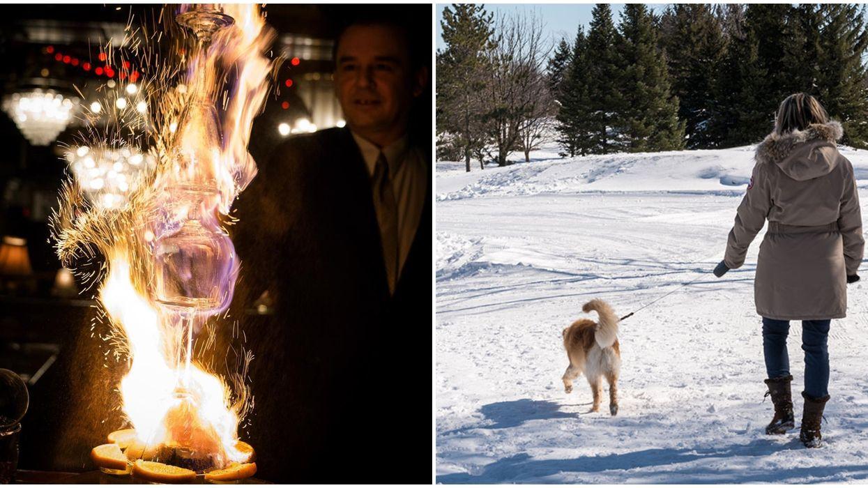 7 choses à faire à Laval et ses environs le weekend entre Noël et le jour de l'an