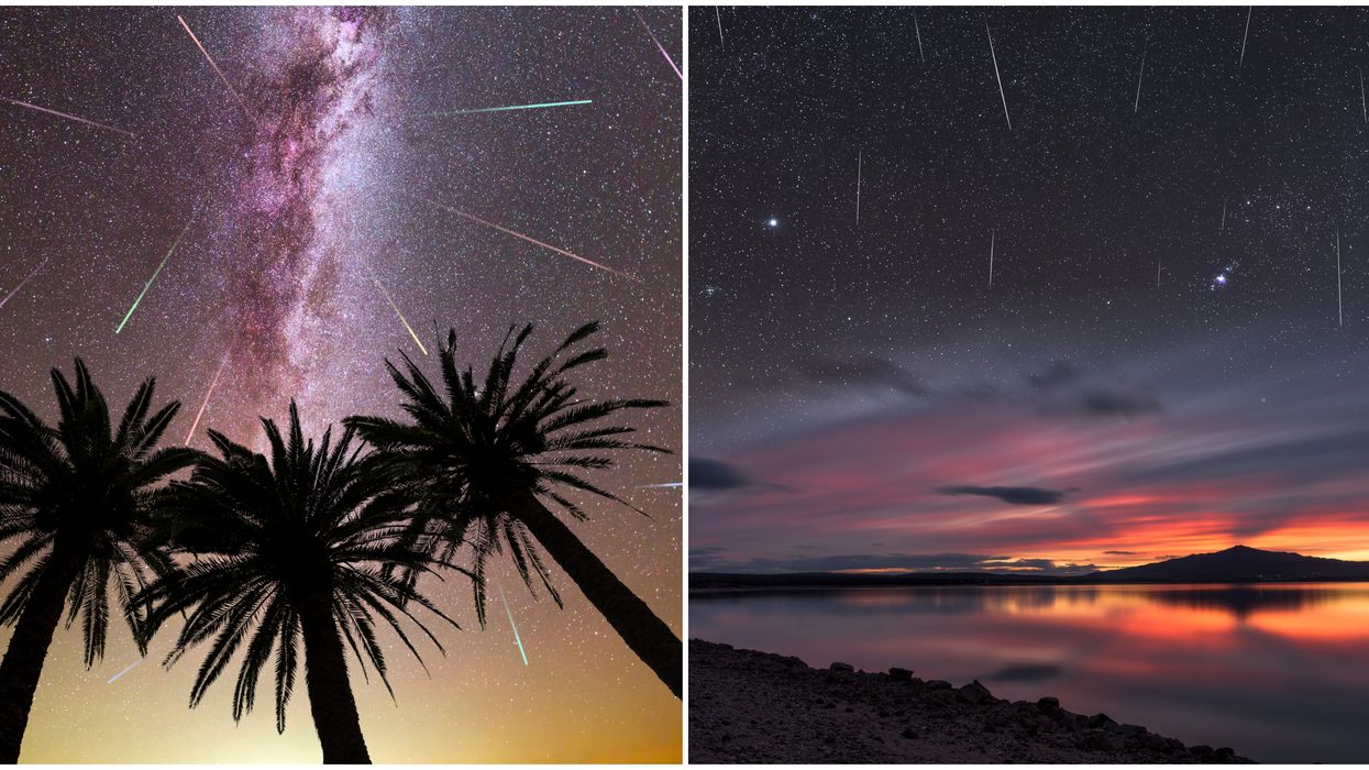 Quadrantids Meteor Shower Will Illuminate Florida Skies Soon