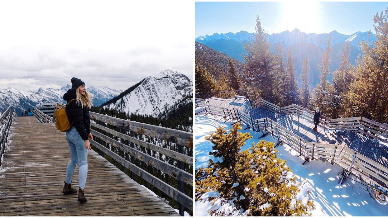 Boardwalk Trail In Alberta Is A 1 km Trail In The Sky With Breathtaking Mountain Top Views