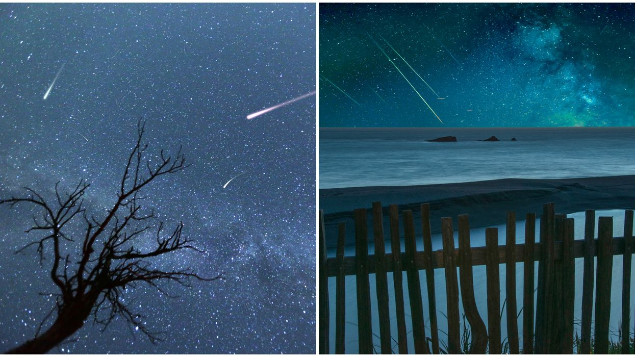 The Quadrantids Meteor Shower Next Month Has The Best Viewing Spots In North Carolina