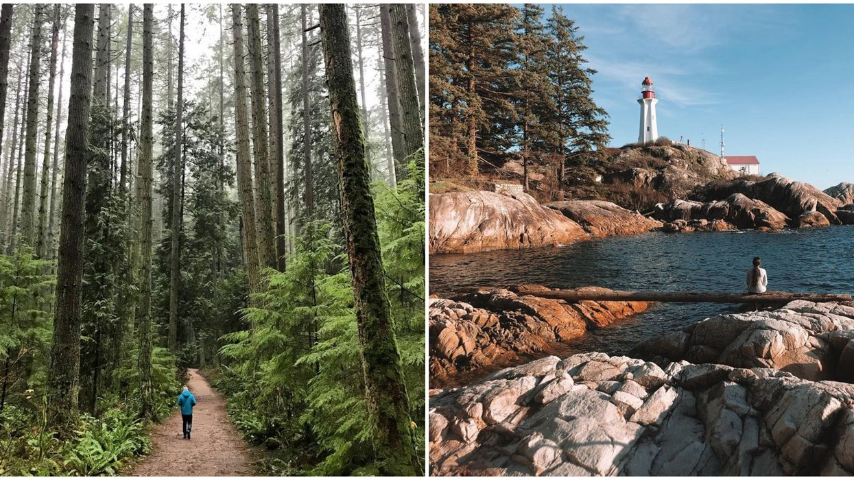 7 Walking Trails In Vancouver Perfect For A Quiet Winter Walk