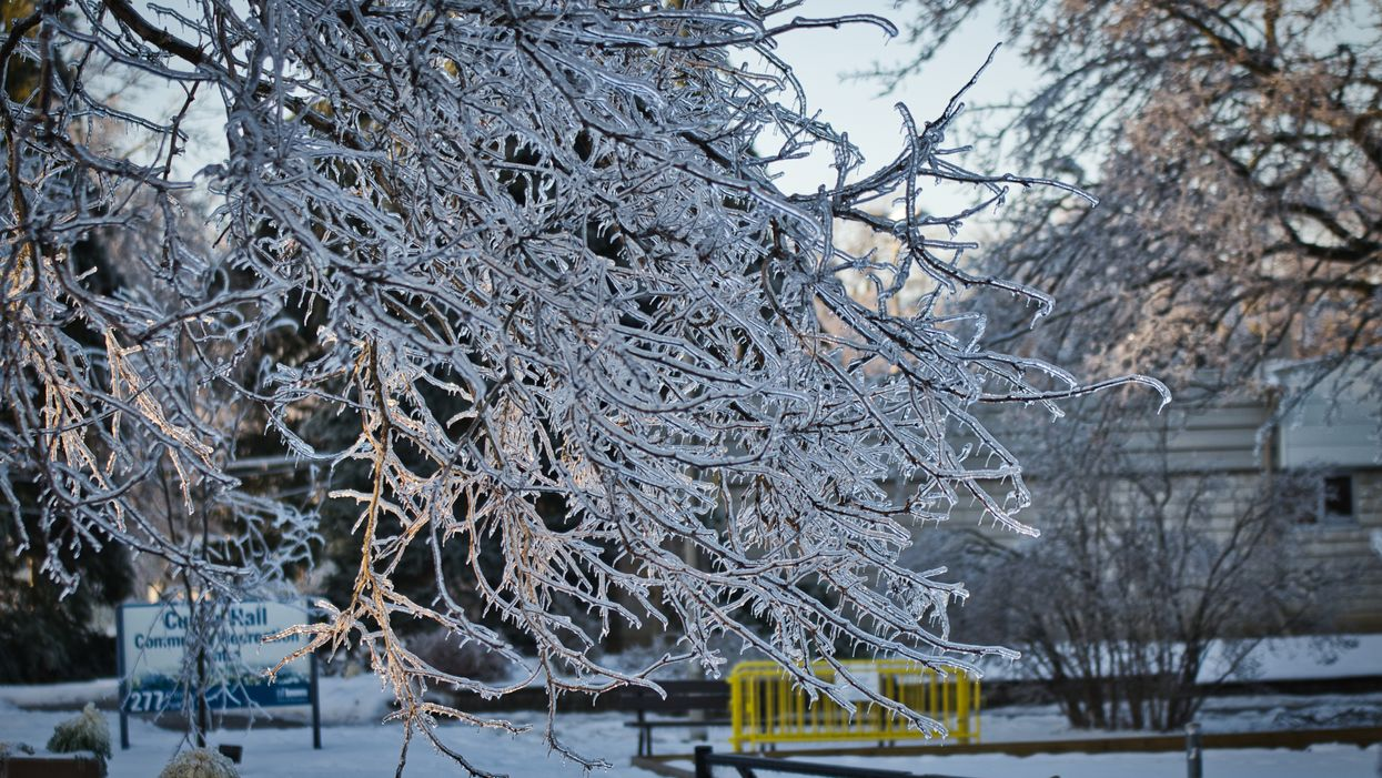 9 Pictures Of This Morning's Ice Storm That'll Make You Want To Stay inside Forever