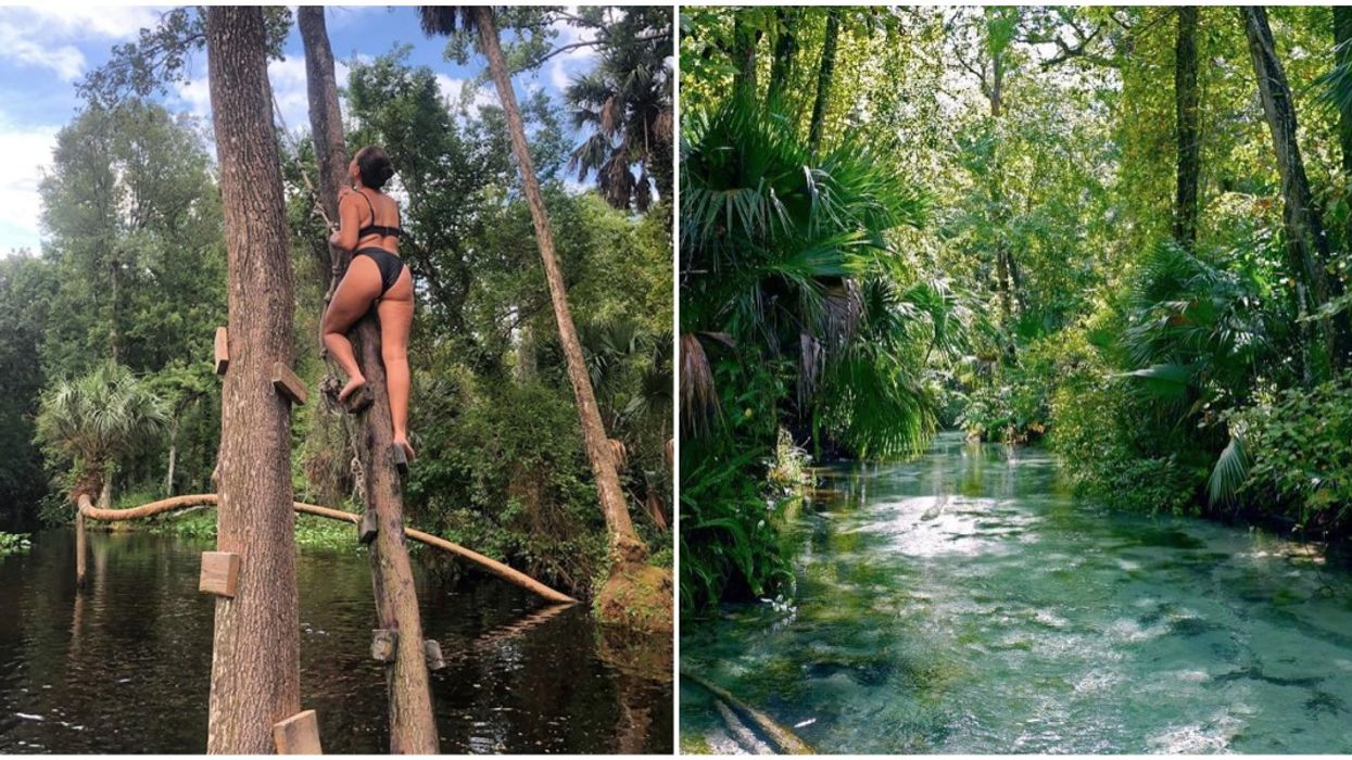 Rope Swings At Kings Landing In Florida Are Open For Public Use