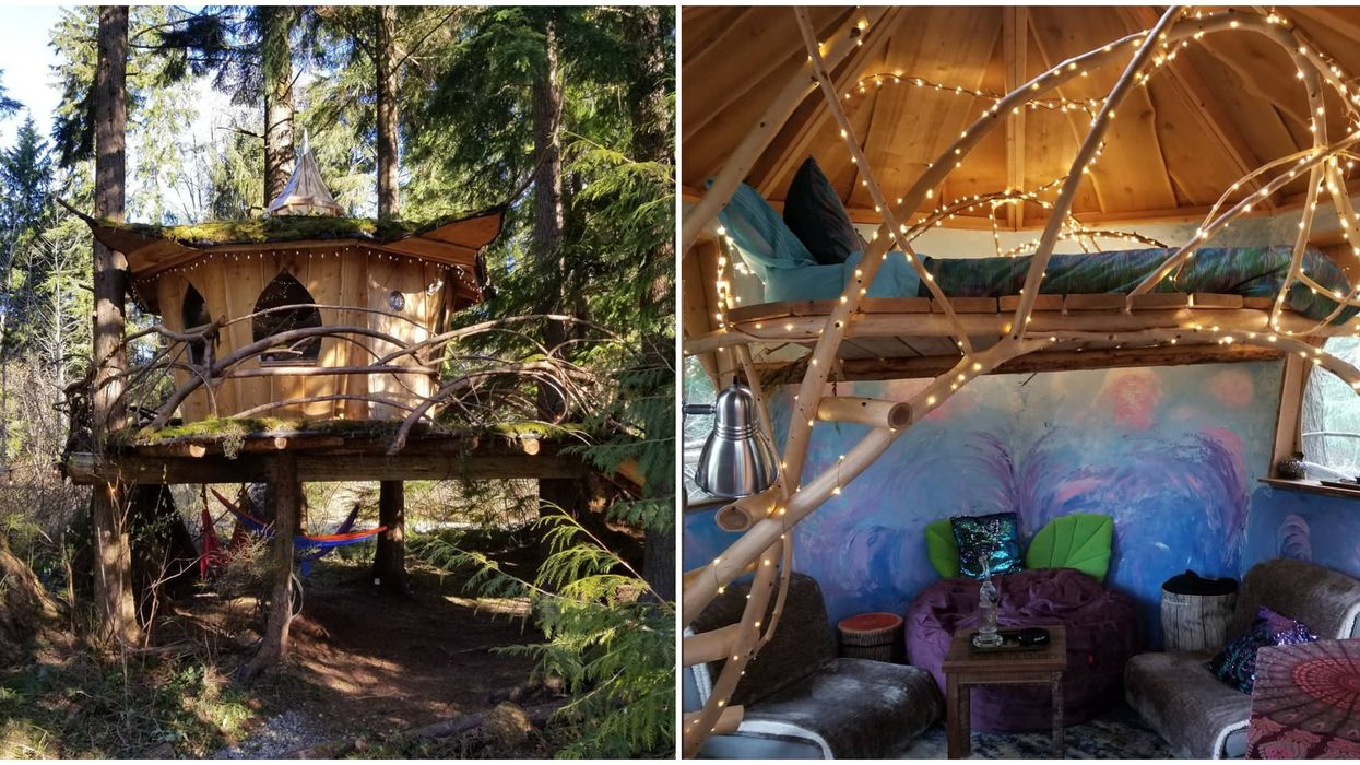 You Can Rent Pot Friendly Treehouses In Washington