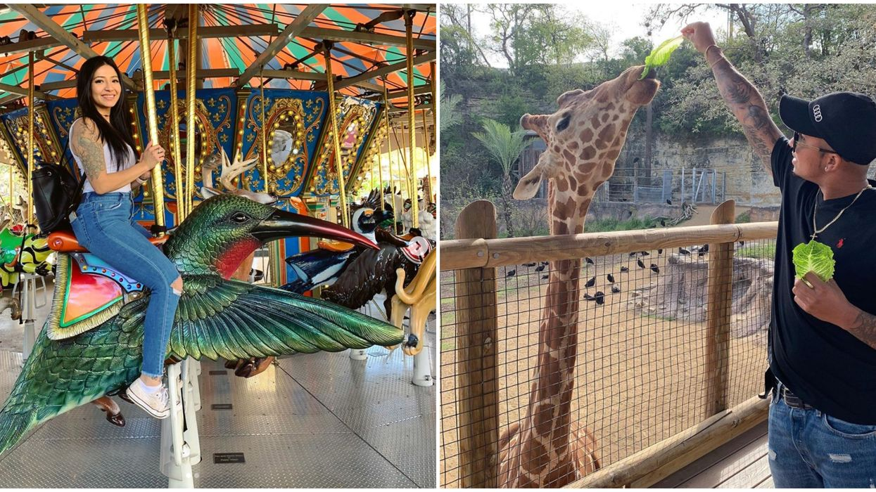 The San Antonio Zoo's Latin America Weekend Is This Spring