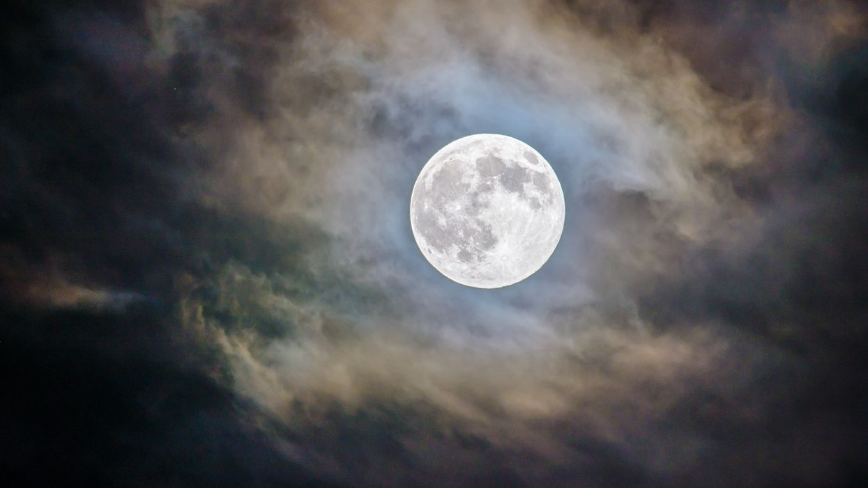 """The First Full Moon Of 2020 Will Be Next Week & It's Called A """"Wolf Moon"""""""