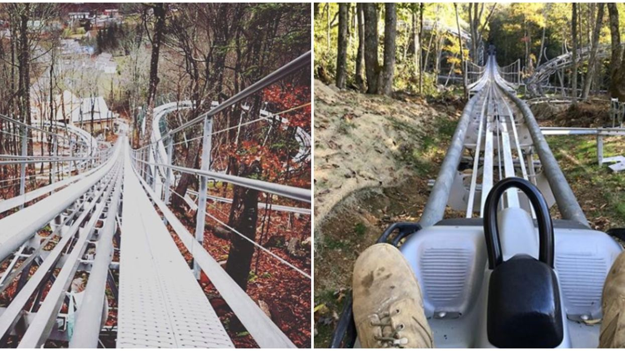 Things To Do In North Carolina Include Taking A Ride On This Mountain Coaster