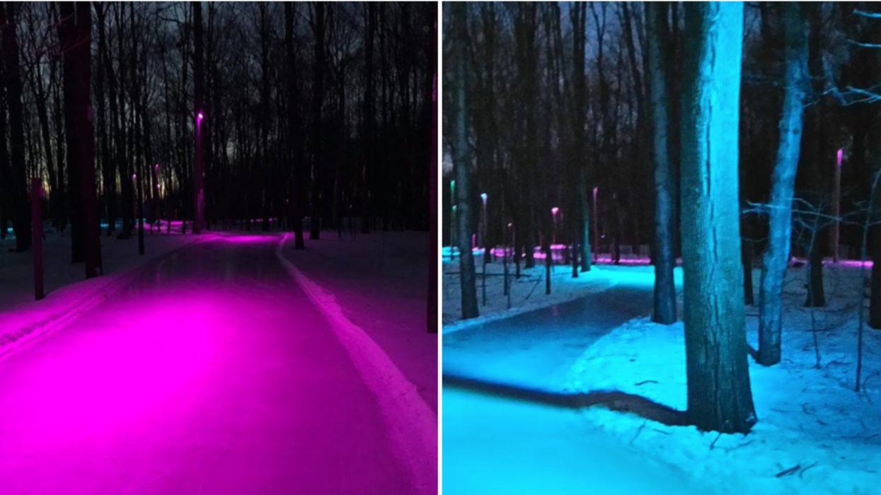 Un sentier de patin illuminé dans les bois existe à 30 minutes de Laval