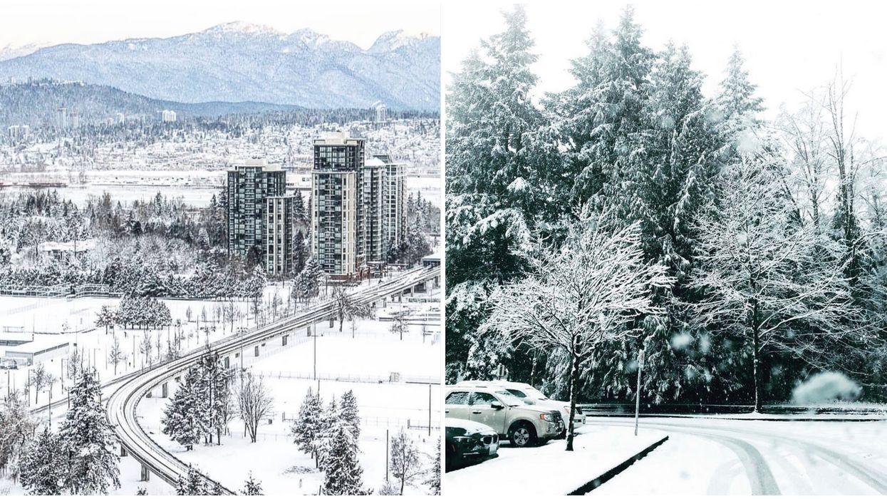 Surrey Snowstorm Turned Metro Vancouver Into A Winter Wonderland
