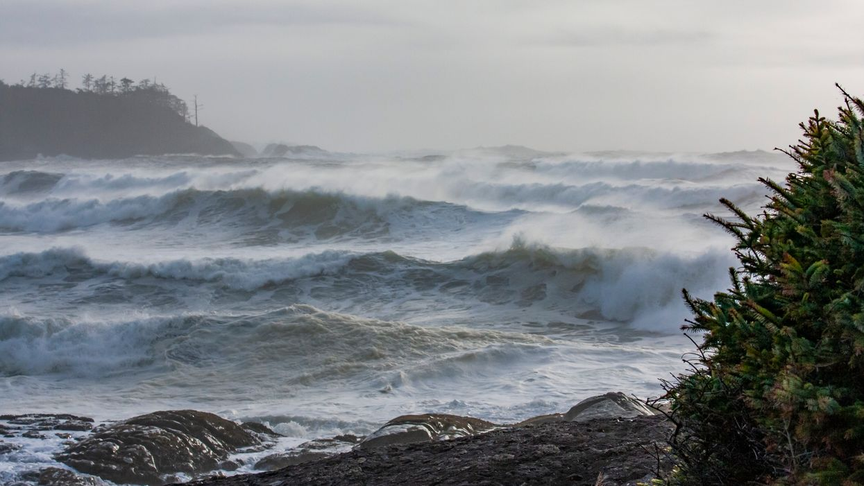 BC Hurricane Warning Issued For Winds Of Up To 120 Km/H Today