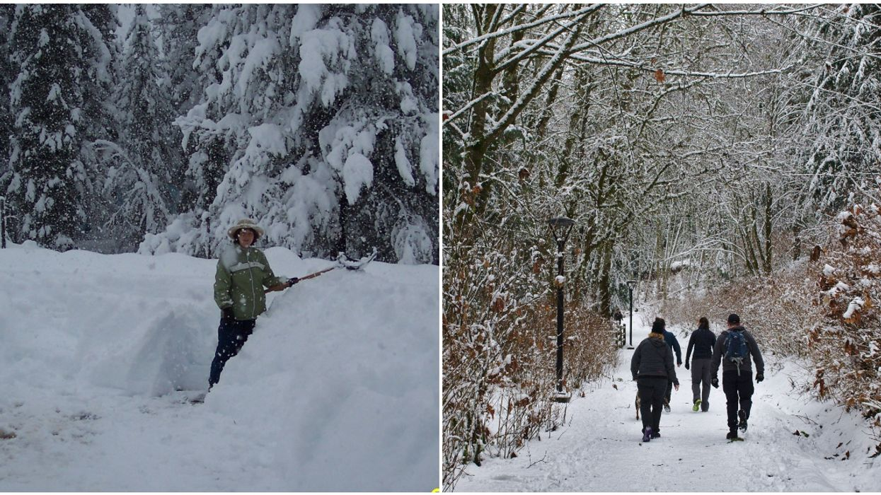 B.C. Storm Perfectly Summed Up In 7 Videos Of The Best Reactions To Today's Snow