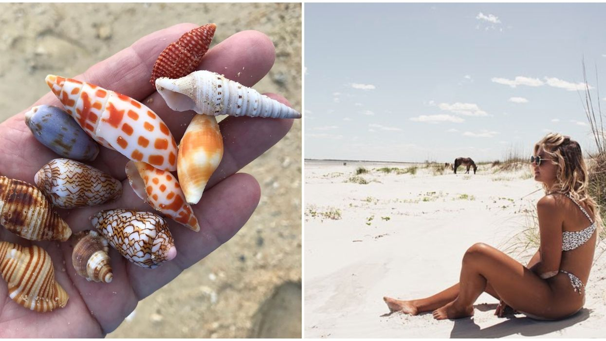 The Best Beaches In Georgia Include This Amazing Spot That's Perfect For Finding Seashells