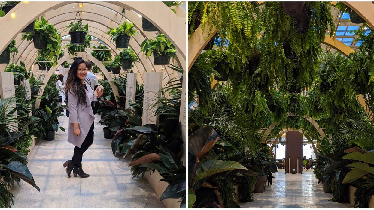 Union Station's Winter Garden Tunnel Will Transport You To A Leafy Wonderland This Week