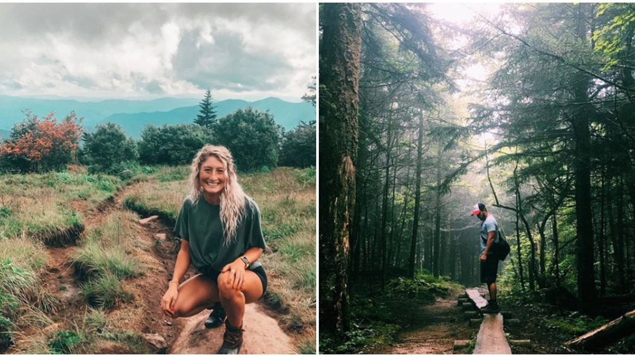 Trail In North Carolina With Wild Blueberries Is The Perfect Spring Adventure