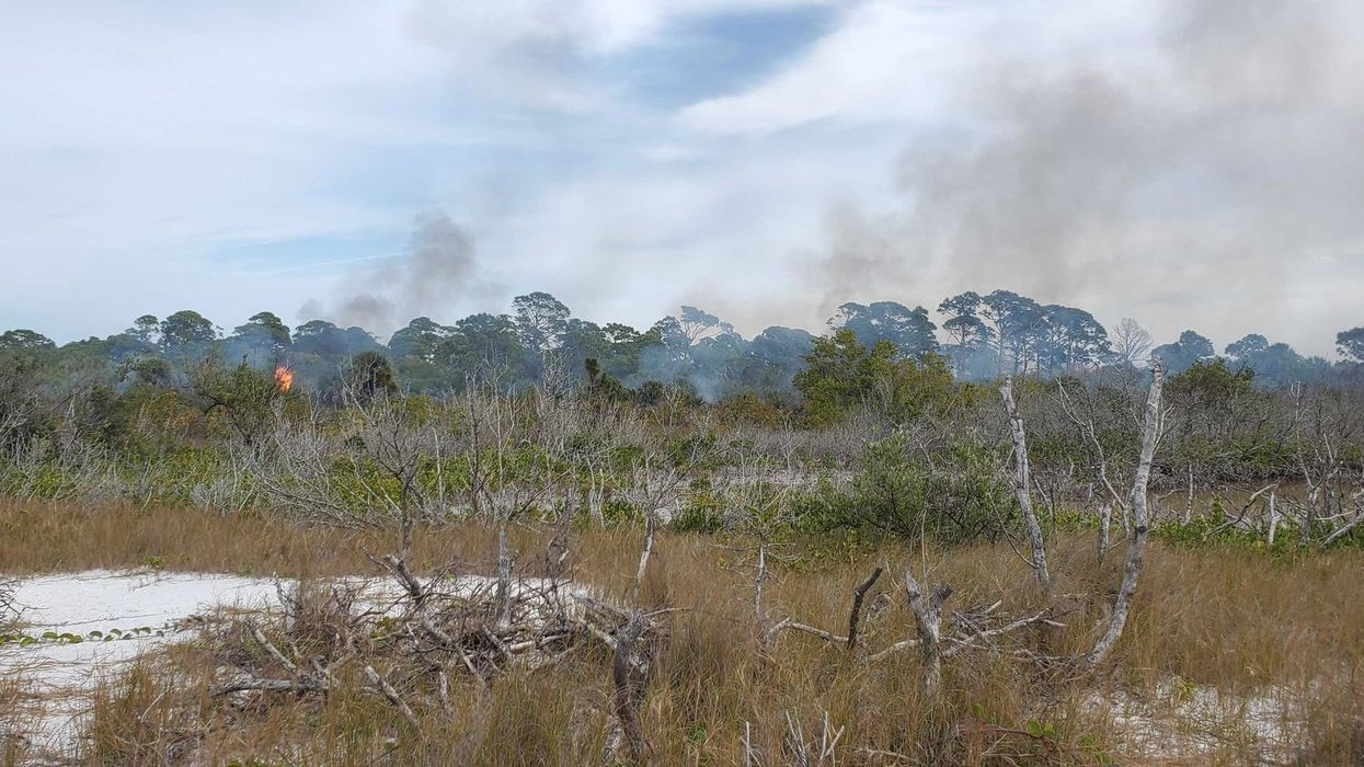 Central Florida Parks Are Experiencing Controlled Burns And These Are The Areas To Avoid
