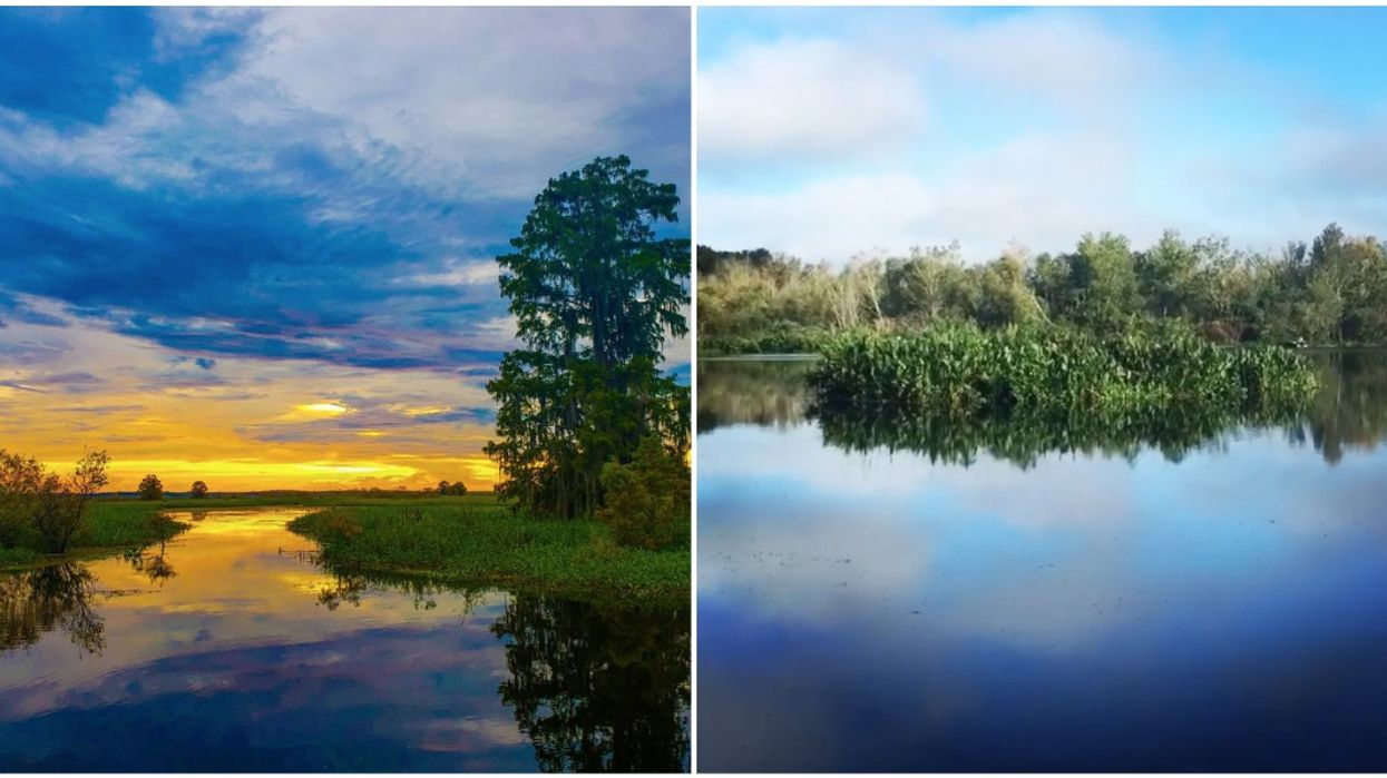 Orange Lake in North Florida Has Mysterious Moving 'Floating Islands'