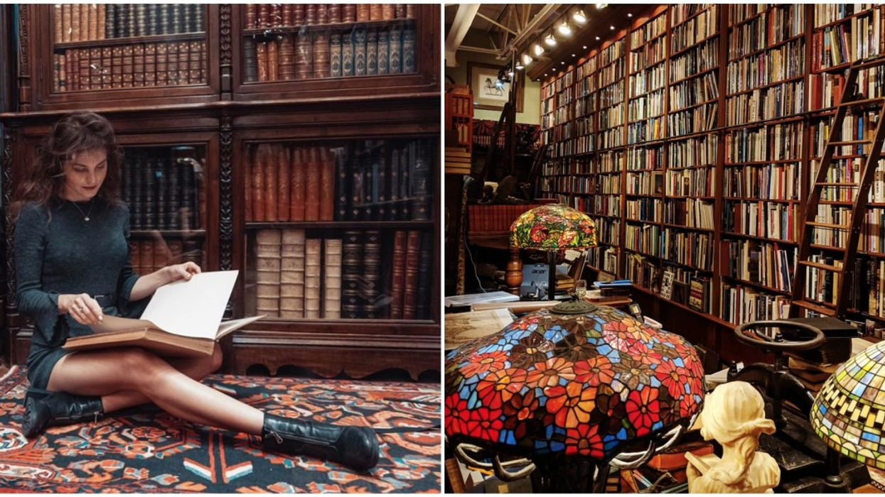 The Old Florida Book Shop Is Like The Hogwarts Library