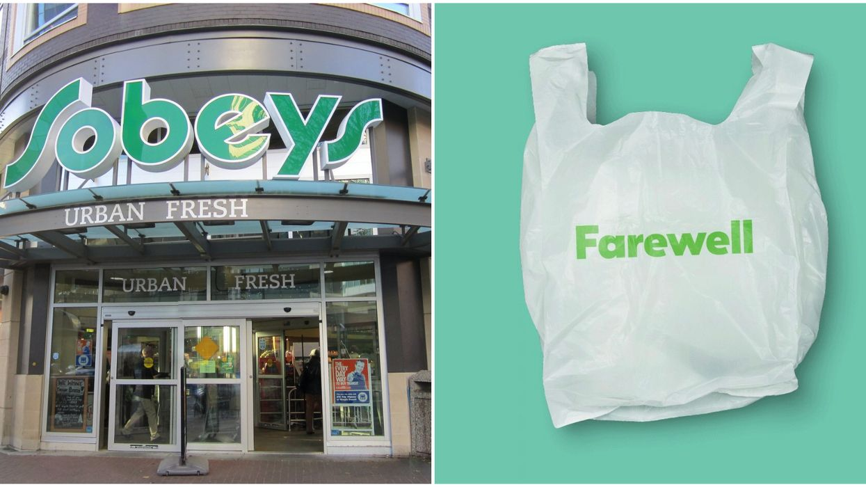 Sobeys Getting Rid Of Plastic Bags Inspired These 12 Hilarious Reactions