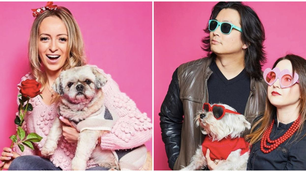 Valentine's Day Pet Photoshoot In Toronto Lets You Take Awkward Pics With A Furry Friend