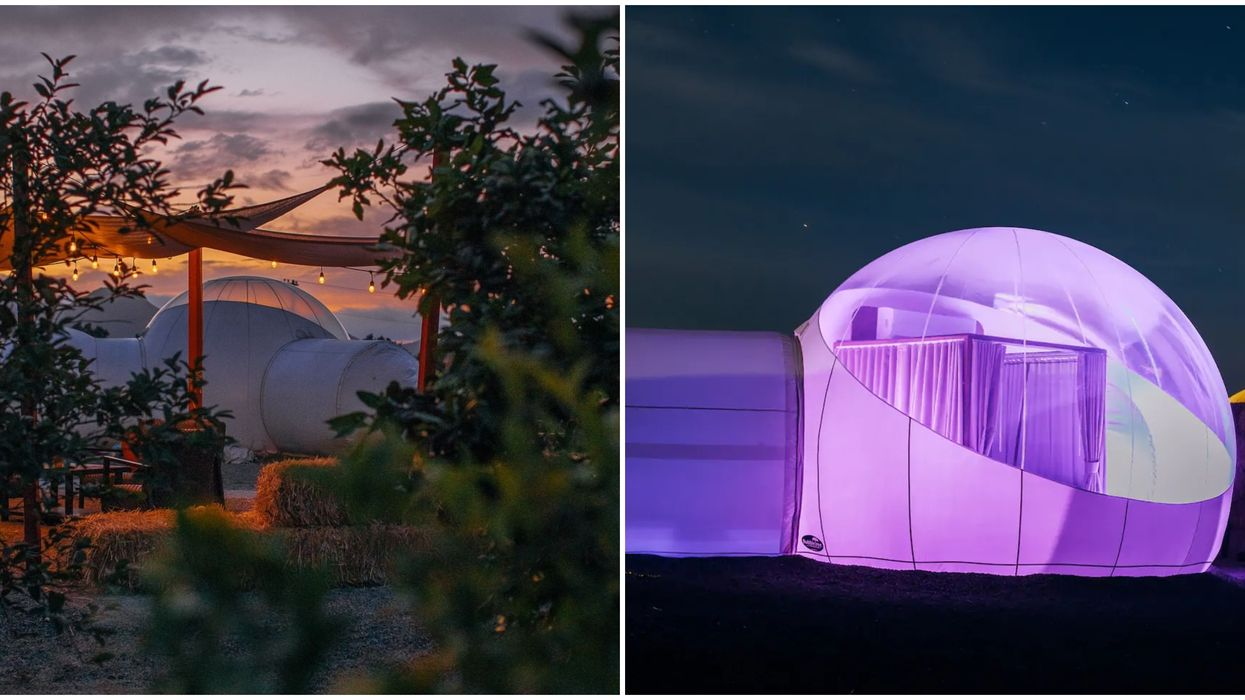 This Bubble Hotel Near California Is The Perfect Way To Sleep Under The Stars