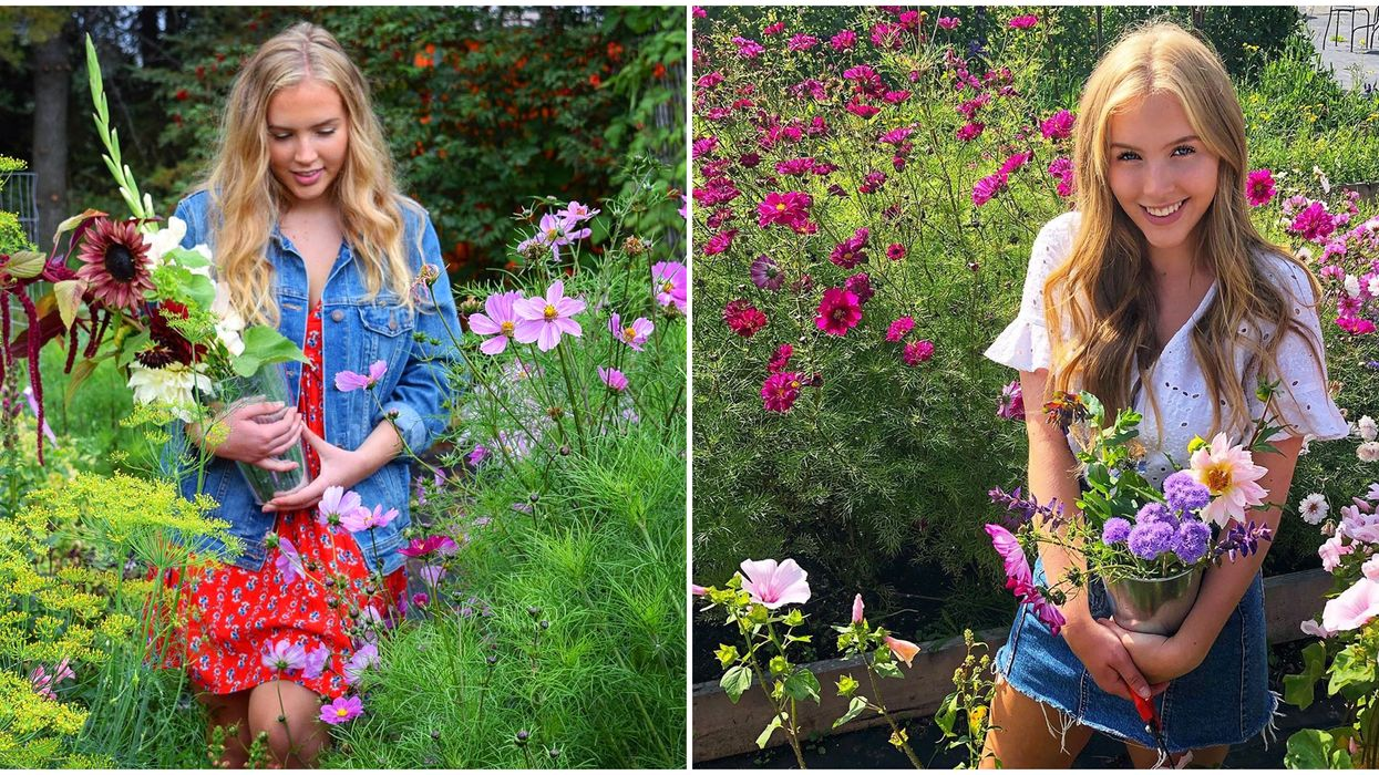 Pick Your Own Flowers In Edmonton At This Adorable Garden Near Edmonton