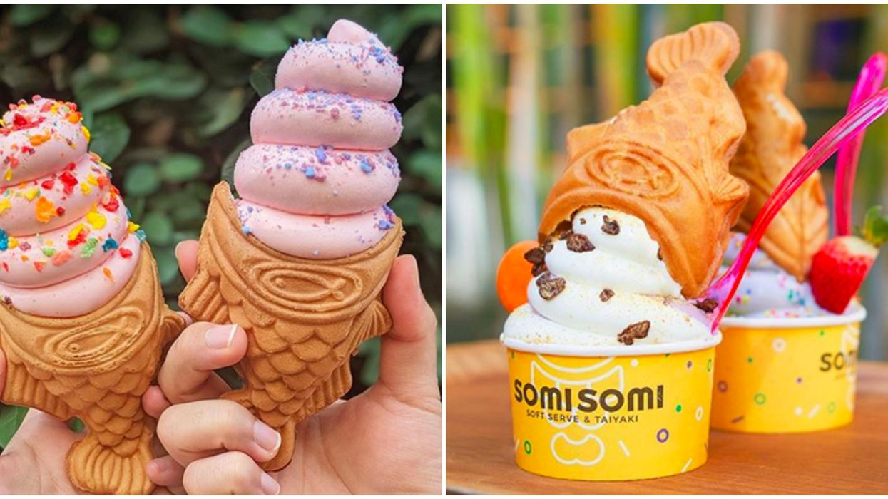 Carrollton's Newest Ice Cream Shop Will Have Fish Shaped Waffle Cones