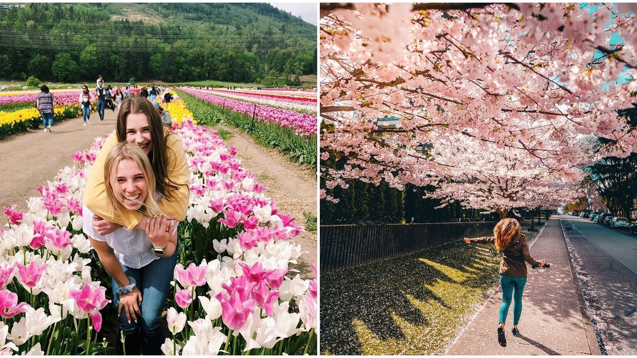 22 Things To Do In BC This Spring That You Need To Add To Your Bucket List