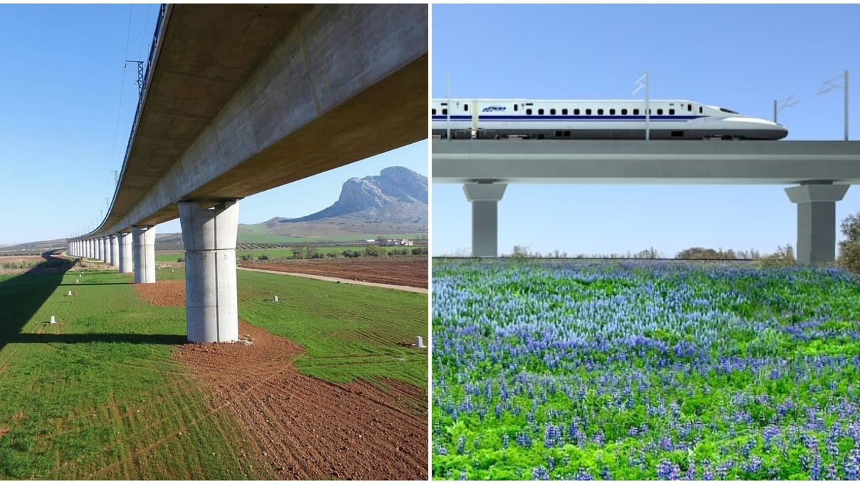A First Look Of Texas's High Speed Train Shows Spacious Seating