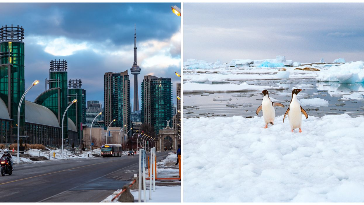 Toronto Weather Is Going To Be Colder Than Parts Of Antarctica Today