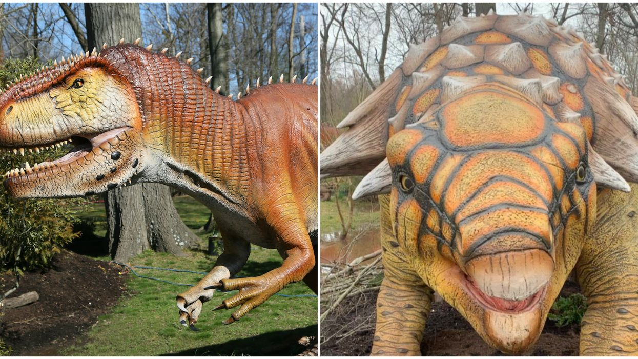 Things To Do In Memphis In Spring 2020 Include This Dinosaur Exhibit