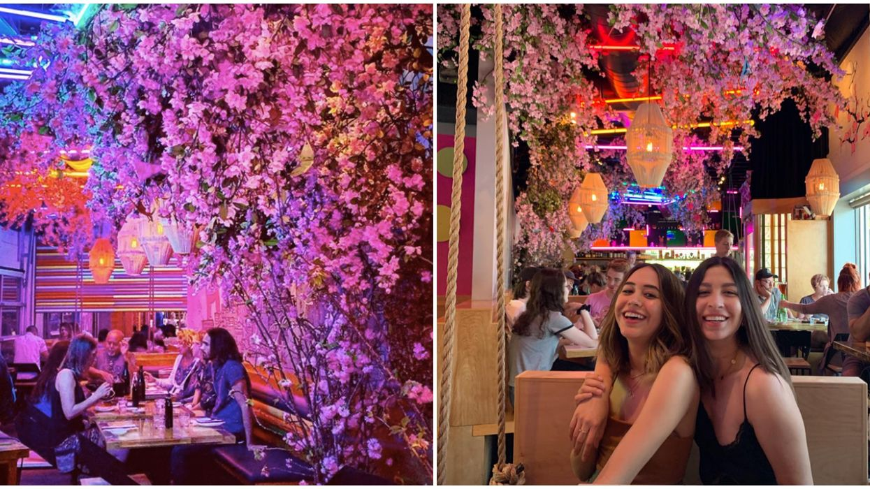 You Can Sit Under 550 Pounds Of Cherry Blossoms At This Austin Restaurant