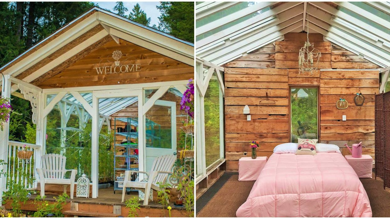 This Unique Stay In Washington Lets You Spend The Night In A Glass Greenhouse