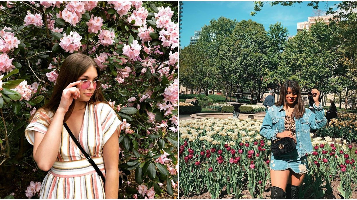 Blooming Flowers In Toronto You Need To Check Out This Spring