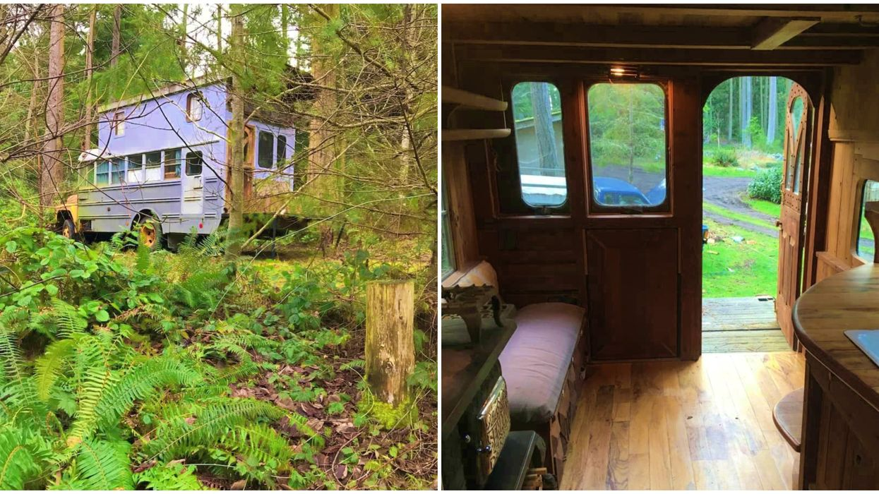 Unique Tiny House In Washington Is A Converted School Bus
