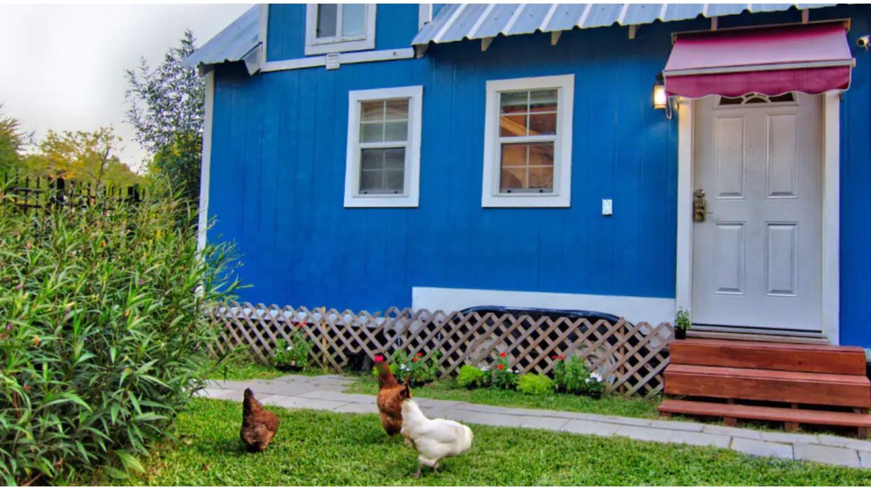 A Midtown Houston Tiny House With Chickens Is A Country Retreat In The City