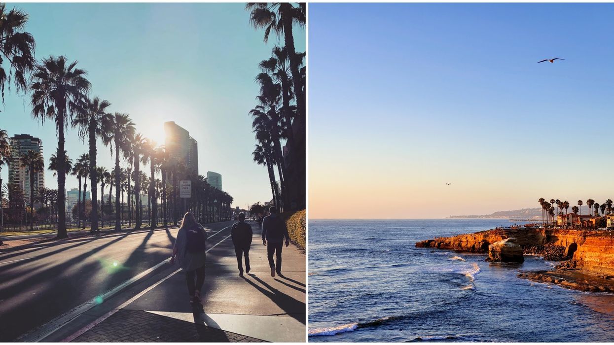 Cheap Flights From Edmonton To San Diego Are Going For Under $100 Right Now