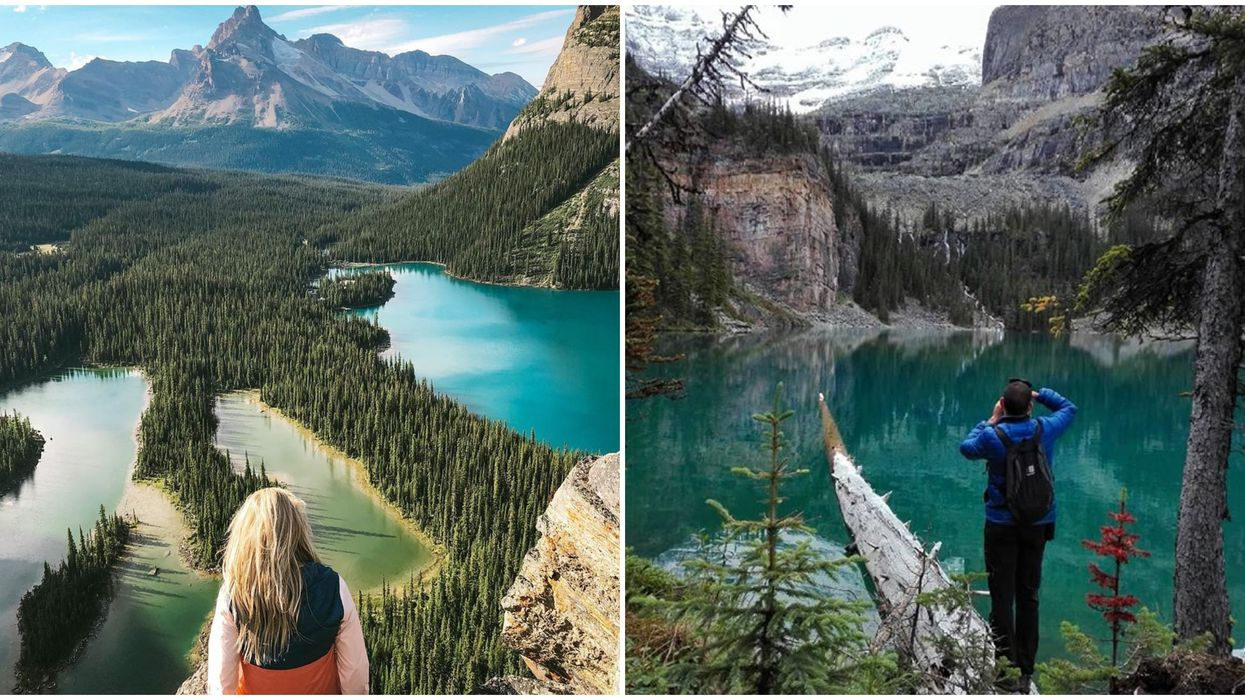 Lake O'Hara Is So Popular You'll Have To Wait A Year To Go See It For Yourself